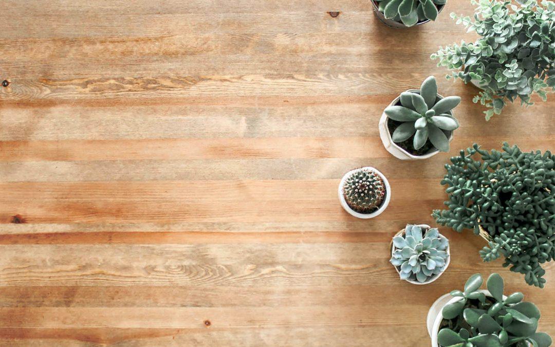 5 tips voor het onderhouden van jouw parketvloer